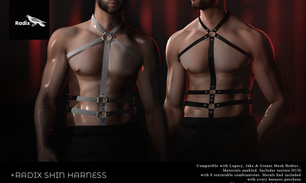 Radix - Shin Harness. Individual L$250 | Fatpack L$999. Demo Available ★.